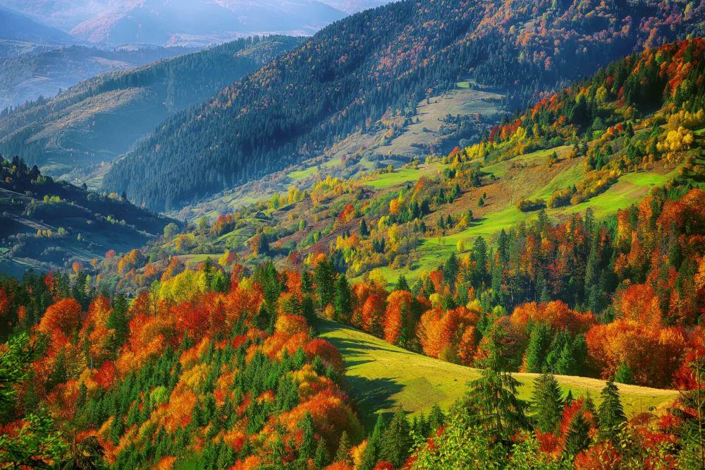 Goldener Herbst in Riesengebirgen